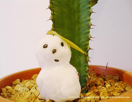 雪だるま0124.jpg
